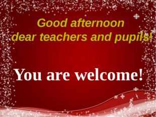 Good afternoon dear teachers and pupils! You are welcome!