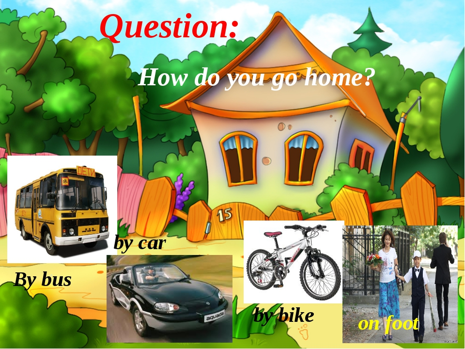 Question: How do you go home? By bus by bike by car on foot