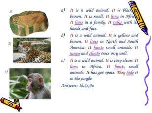 It is a wild animal. It is black or brown. It is small. It lives in Africa. I
