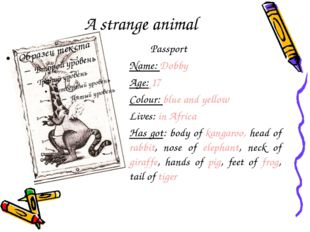 A strange animal Passport Name: Dobby Age: 17 Colour: blue and yellow Lives: