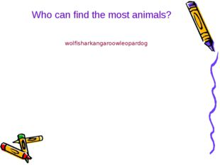 Who can find the most animals? wolfisharkangaroowleopardog