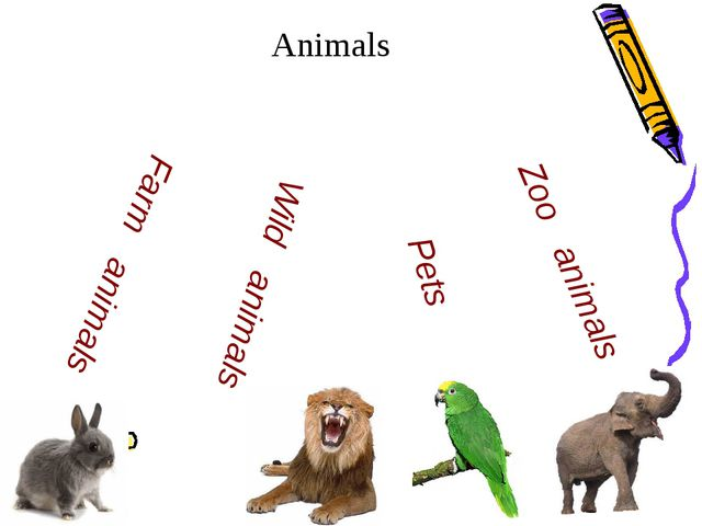 Animals Pets Farm animals Zoo animals Wild animals