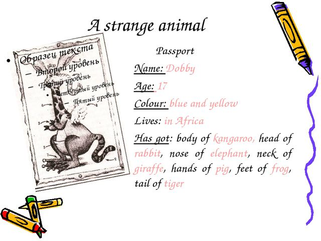 A strange animal Passport Name: Dobby Age: 17 Colour: blue and yellow Lives:...