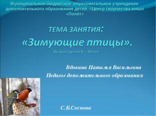 Вдовина Наталья Васильевна Педагог дополнительного образования С.Б.Соснова М