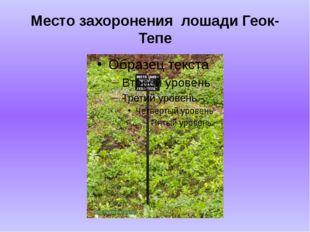 Место захоронения лошади Геок-Тепе
