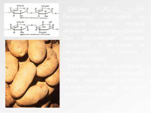 Крахмал (C6Н10О5)n - это биополимер, состоящий из остатков глюкозы - первый в
