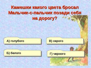 А) голубого Б) белого Г) черного В) серого Камешки какого цвета бросал Мальчи