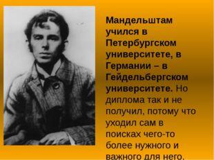 Мандельштам учился в Петербургском университете, в Германии – в Гейдельбергск