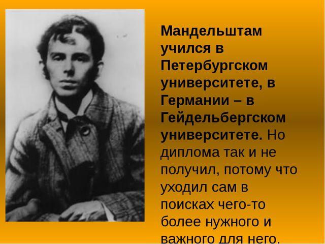 Мандельштам учился в Петербургском университете, в Германии – в Гейдельбергск...