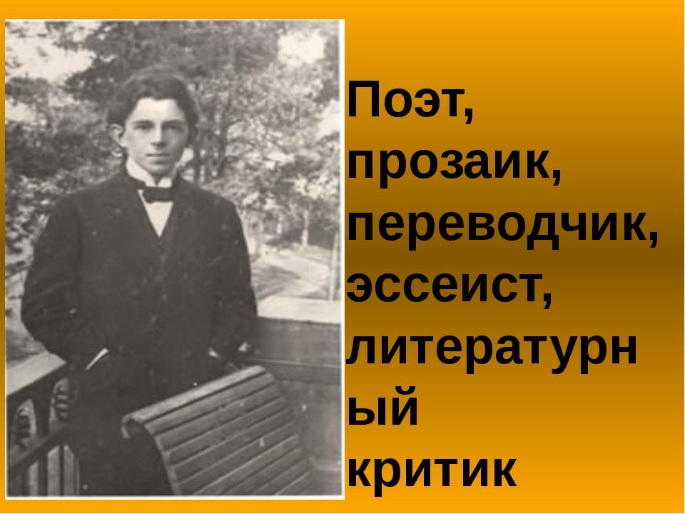 Поэт, прозаик, переводчик, эссеист, литературный критик