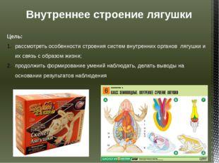 Внутреннее строение лягушки Цель: рассмотреть особенности строения систем вну