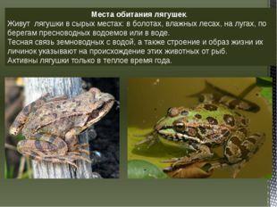 Места обитания лягушек. Живут лягушки в сырых местах: в болотах, влажных леса