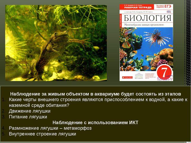 Наблюдение за живым объектом в аквариуме будет состоять из этапов Какие черты...
