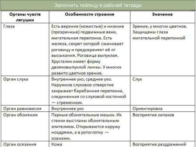 Заполнить таблицу в рабочей тетради