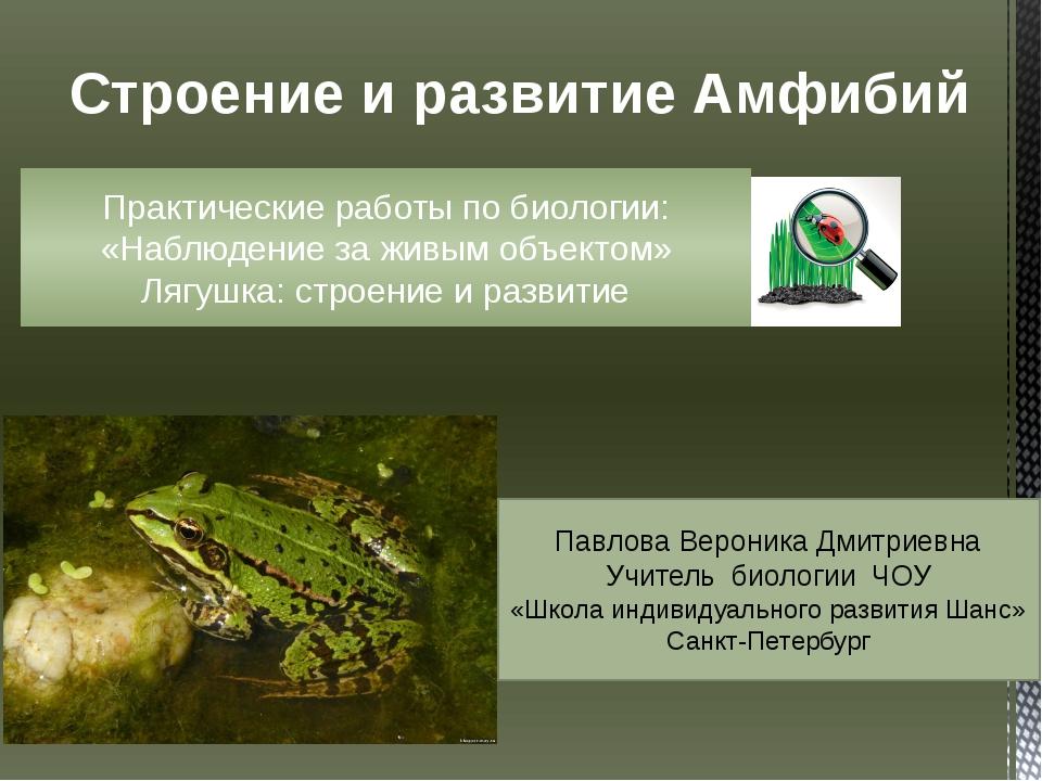 Строение и развитие Амфибий Практические работы по биологии: «Наблюдение за ж...