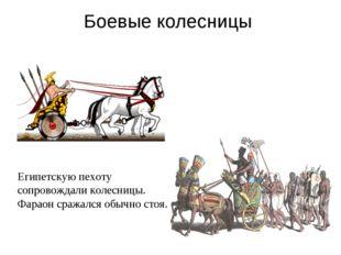 Боевые колесницы Египетскую пехоту сопровождали колесницы. Фараон сражался об