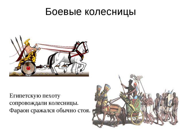 Боевые колесницы Египетскую пехоту сопровождали колесницы. Фараон сражался об...