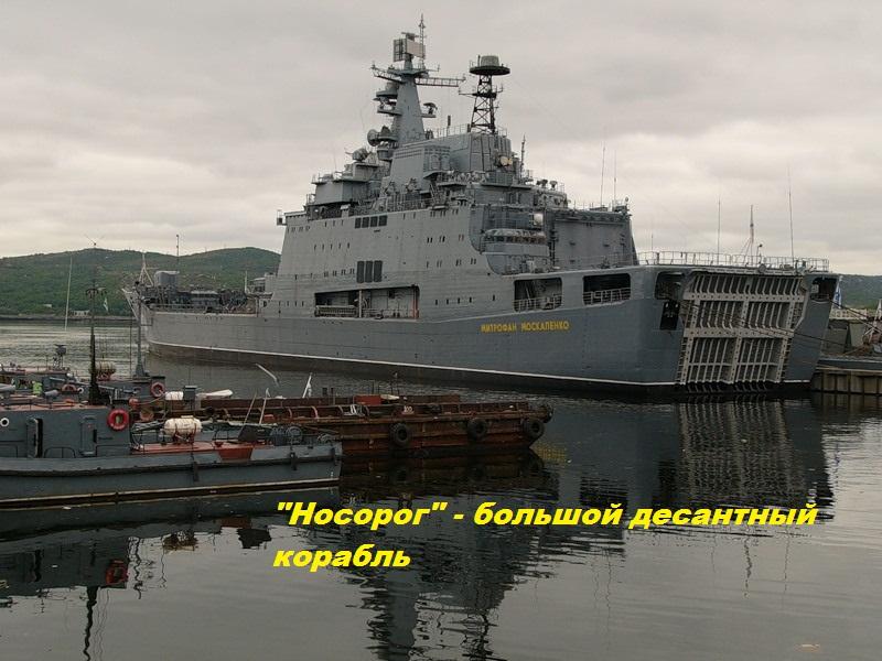 Носорог — большой десантный корабль пр. 1174.jpg