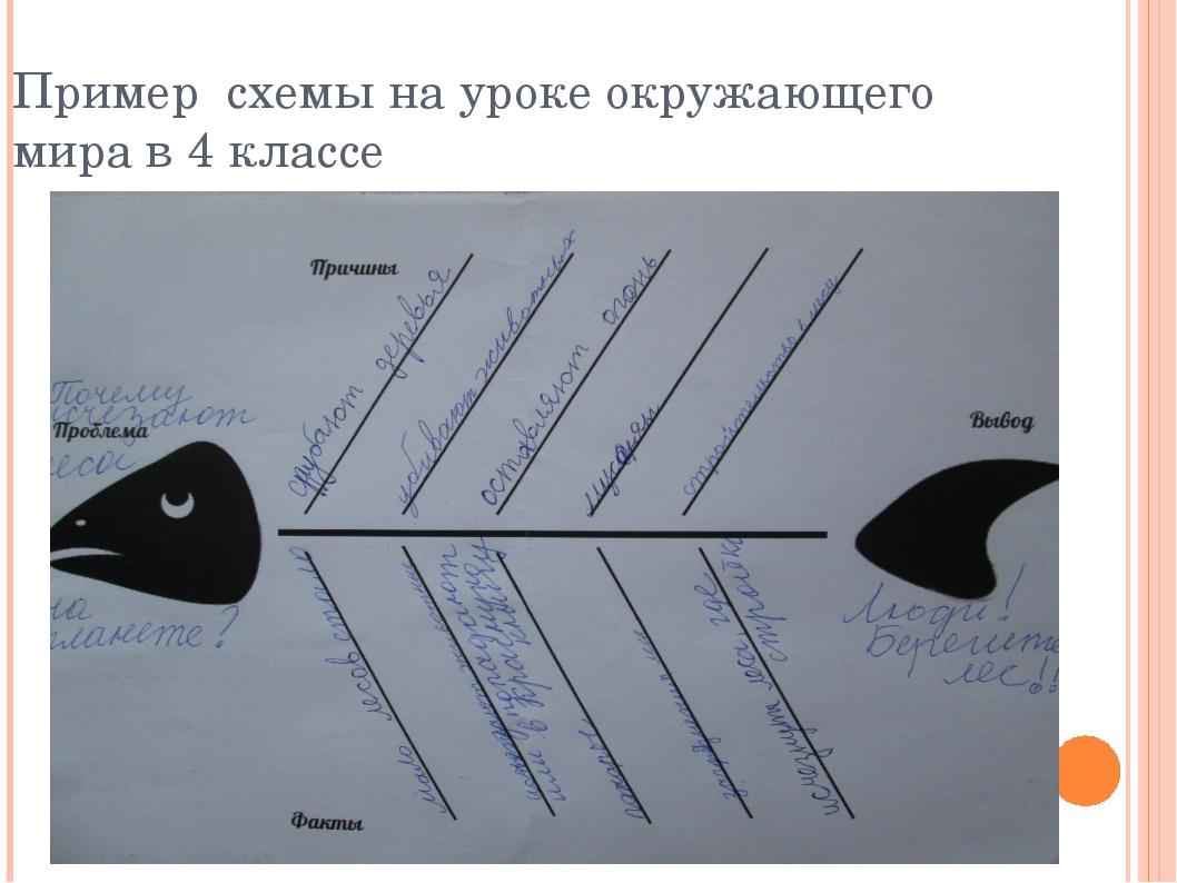 Пример схемы на уроке окружающего мира в 4 классе