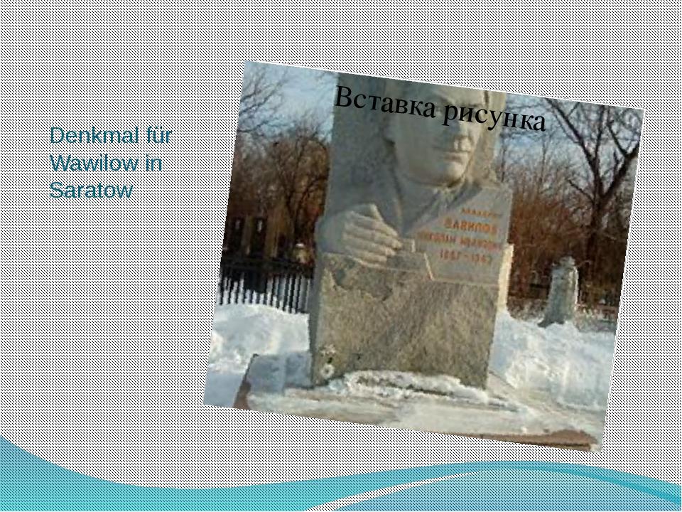 Denkmal für Wawilow in Saratow