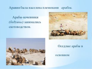 Аравия была населена племенами арабов. Арабы-кочевники (бедуины) занимались с