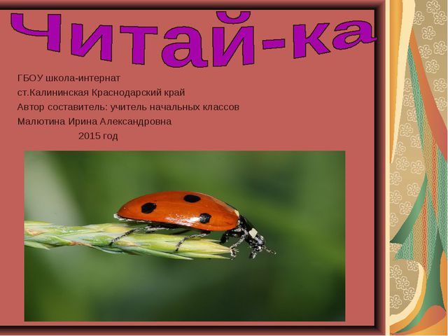 ГБОУ школа-интернат ст.Калининская Краснодарский край Автор составитель: учит...