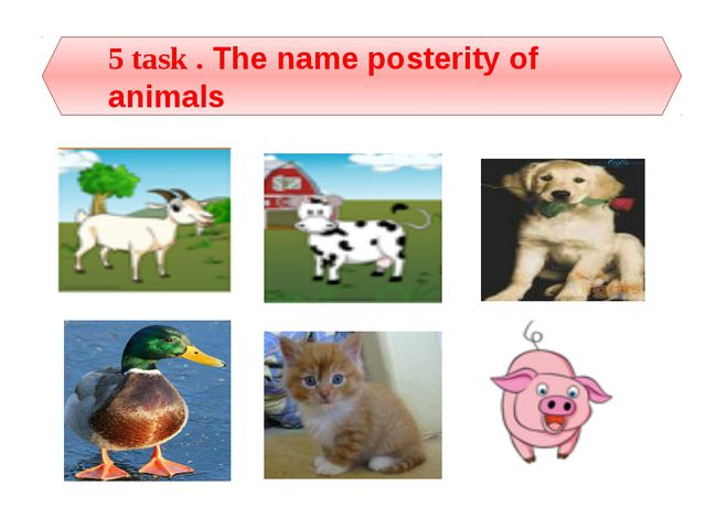 5 task . The name posterity of animals