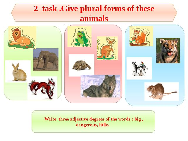 2 task .Give plural forms of these animals Write three adjective degrees of t...