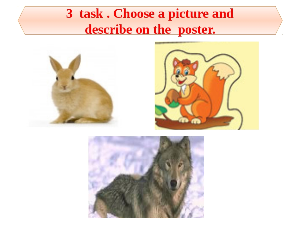 3 task . Choose a picture and describe on the poster.