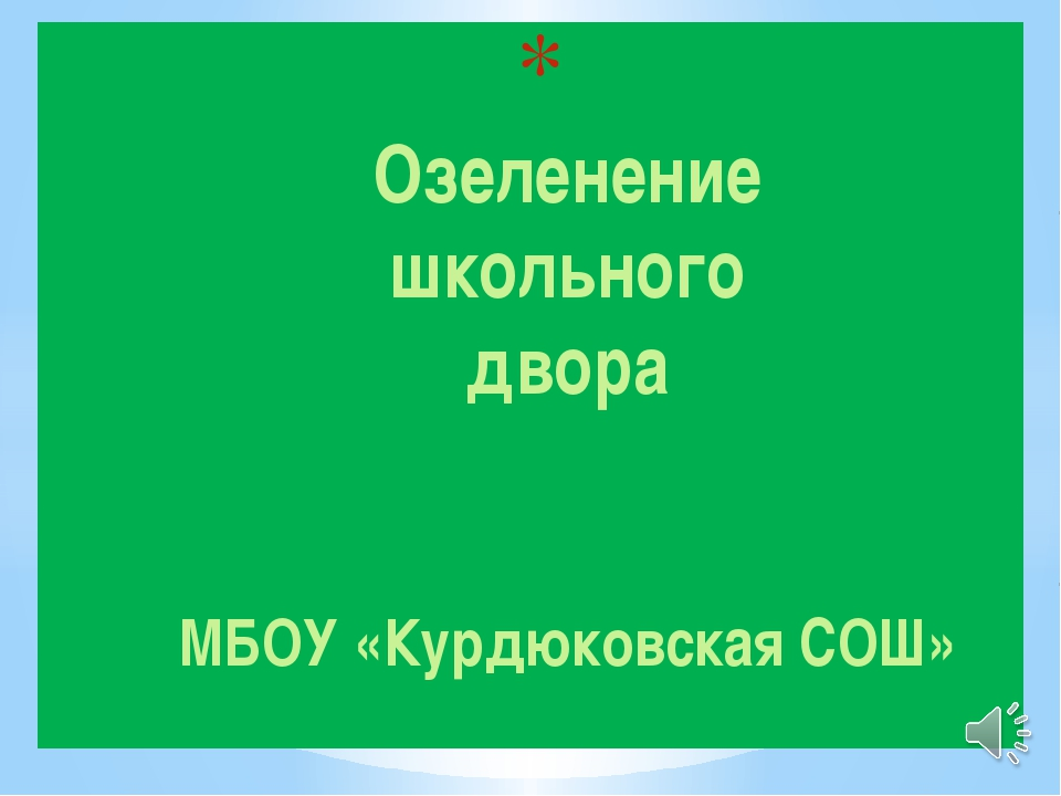 Озеленение школьного двора Озеленение школьного двора МБОУ «Курдюковская СОШ»
