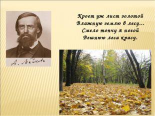 Кроет уж лист золотой Влажную землю в лесу... Смело топчу я ногой Вешнюю леса