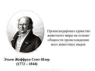 Этьен Жоффруа Сент-Илер (1772 – 1844) Пропагандировал единство животного мира