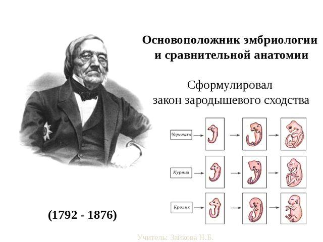 Карл Макси́мович Бэр (1792 - 1876) Основоположник эмбриологии и сравнительно...