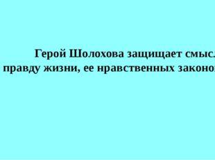 Герой Шолохова защищает смысл и правду жизни, ее нравственных законов.