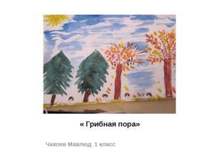 « Грибная пора» Чахоев Мавлюд 1 класс