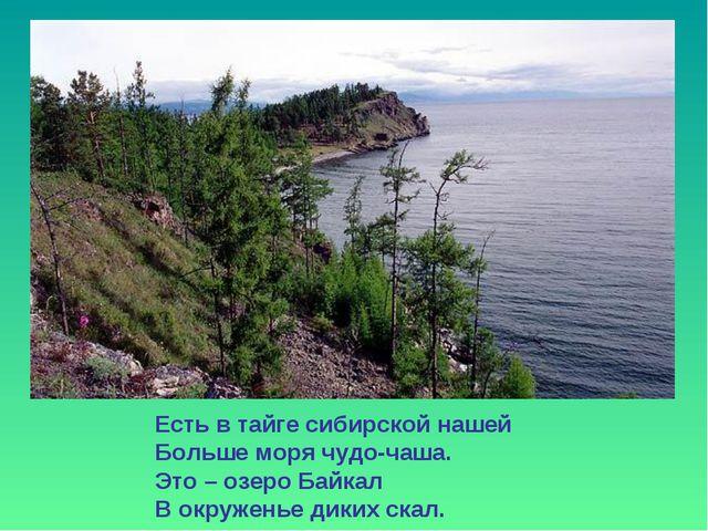 Есть в тайге сибирской нашей Больше моря чудо-чаша. Это – озеро Байкал В окру...