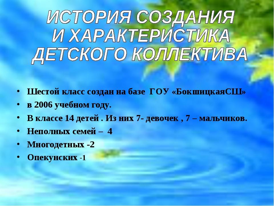 Шестой класс создан на базе ГОУ «БокшицкаяСШ» в 2006 учебном году. В классе...