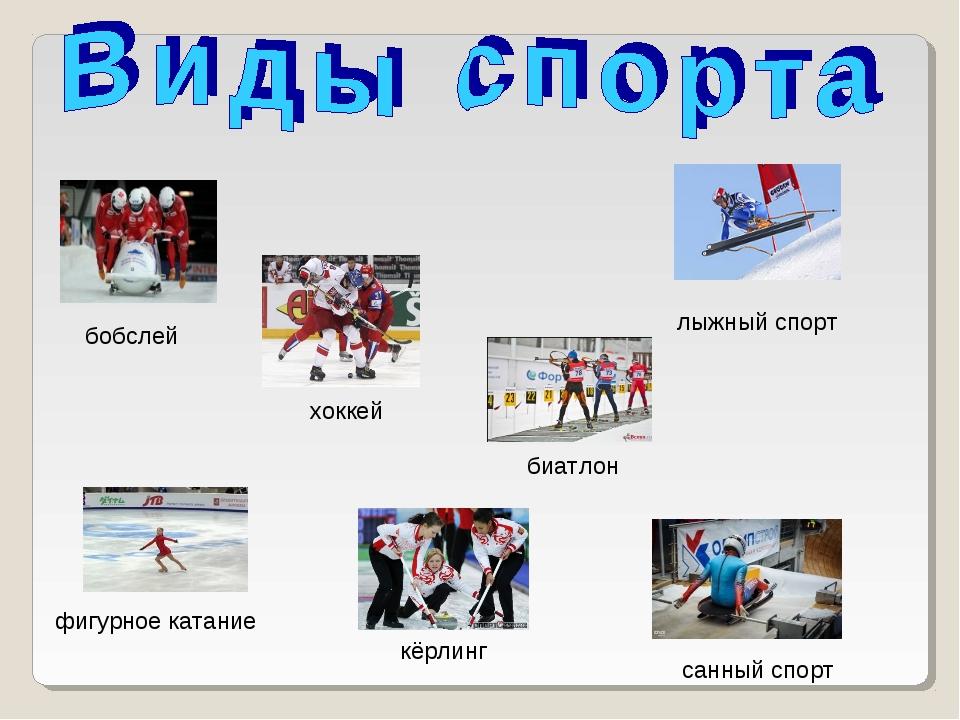 лыжный спорт санный спорт биатлон хоккей бобслей фигурное катание кёрлинг