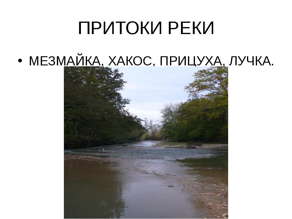 ПРИТОКИ РЕКИ МЕЗМАЙКА, ХАКОС, ПРИЦУХА, ЛУЧКА.