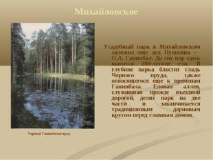 Михайловское Усадебный парк в Михайловском заложил еще дед Пушкина – O.A. Ган