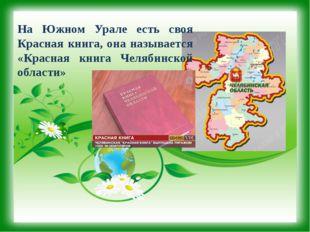 На Южном Урале есть своя Красная книга, она называется «Красная книга Челябин