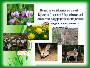 Всего в опубликованной Красной книге Челябинской области содержатся сведения