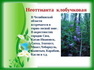 Неоттианта клобучковая В Челябинской области встречается в горно-лесной зоне