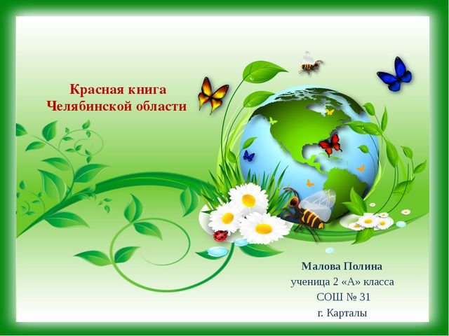 Красная книга Челябинской области Малова Полина ученица 2 «А» класса СОШ № 31...