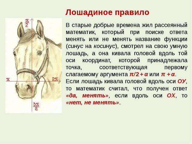 Лошадиное правило В старые добрые времена жил рассеянный математик, который п...
