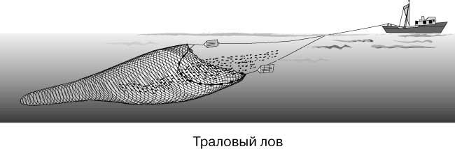 http://infobeby.ru/wp-content/uploads/2012/07/265.jpg