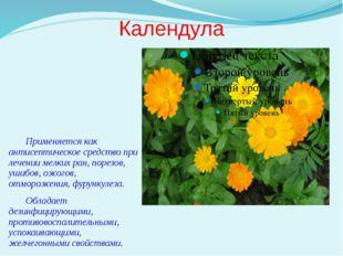 Календула Применяется как антисептическое средство при лечении мелких ран, по