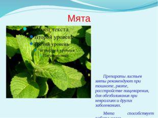 Мята Препараты листьев мяты рекомендуют при тошноте, рвоте, расстройстве пище