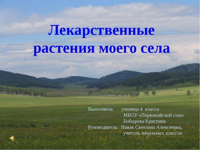 Лекарственные растения моего села Выполнила: ученица 4 класса МБОУ «Первомай...