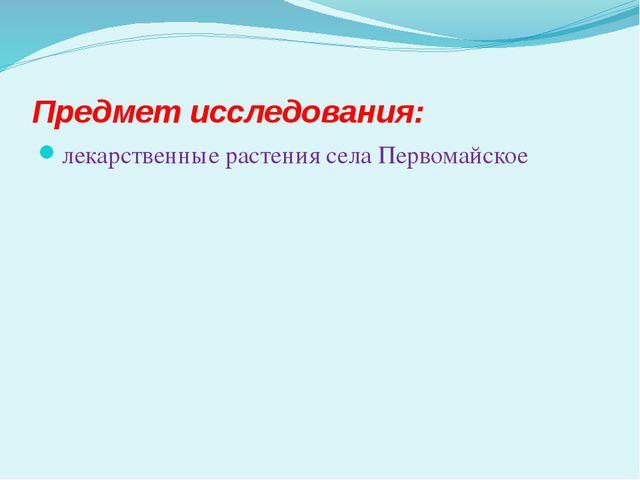 Предмет исследования: лекарственные растения села Первомайское